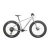 Bearclaw Frank GX Fat Bike Titanium
