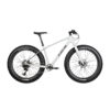 Bearclaw Balthazar Gray fat bike